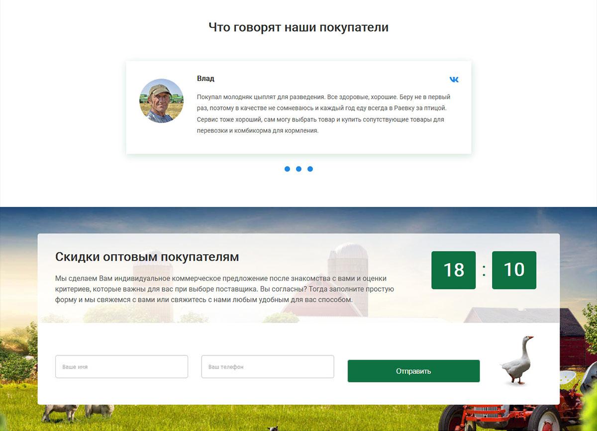 Сайт для фермы по выращиванию сельхозптицы - Кейс